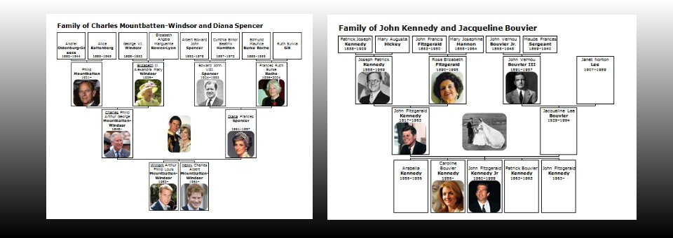 Family charts facilitate the overview ...